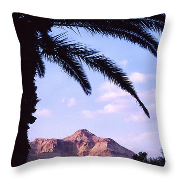 Ein Gedi Oasis Throw Pillow by Thomas R Fletcher