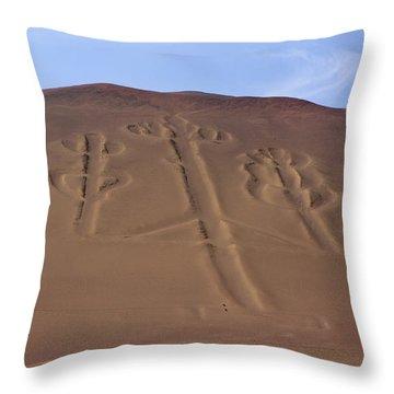 Throw Pillow featuring the photograph El Candelabro Peru by Aidan Moran