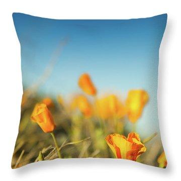 El Paso Poppies Throw Pillow