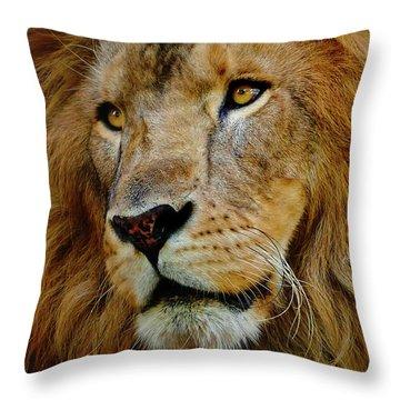 El Rey Throw Pillow by Skip Hunt