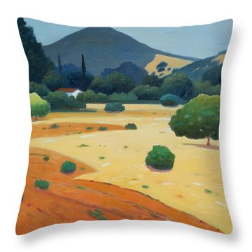 El Toro At Rest Throw Pillow