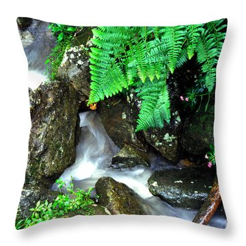 El Yunque Rainforest Water Throw Pillow by Thomas R Fletcher