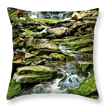 Elakala Falls At Blackwater Falls State Park Throw Pillow