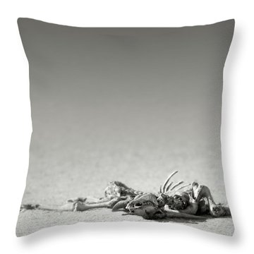 Eland Skeleton In Desert Throw Pillow