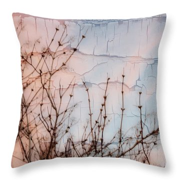 Elder Branches Silhouette Throw Pillow by Sandra Foster