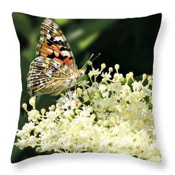 Elderflower And Butterfly Throw Pillow