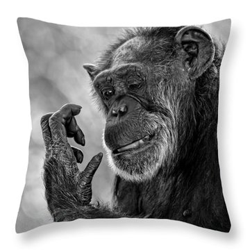 Elderly Chimp Studying Her Hand Throw Pillow