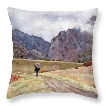 Eldorado Rain Throw Pillow