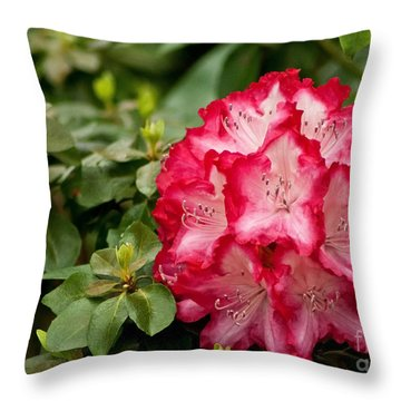 Eleanor Roosevelt Throw Pillow