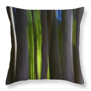 Electric Light  Throw Pillow