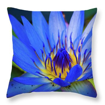 Electric Lily Throw Pillow