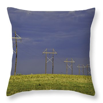 Electric Pasture Throw Pillow