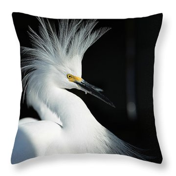 Electrifying Throw Pillow by Fraida Gutovich