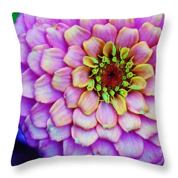 Electrifying Zinna Throw Pillow