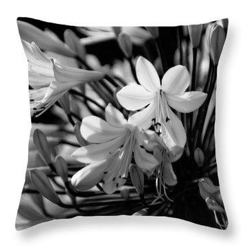 Elegance - Bw Throw Pillow