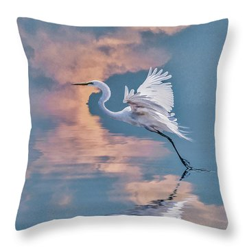 Elegance Throw Pillow by Brian Tarr