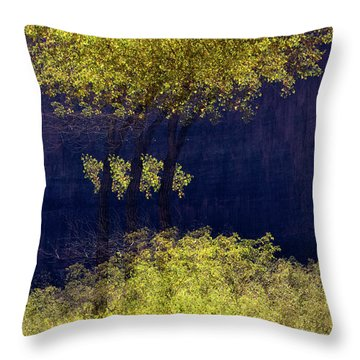 Elegance In The Park Horizontal Adventure Photography By Kaylyn Franks Throw Pillow