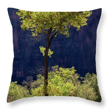 Elegance In The Park Utah Adventure Landscape Photography By Kaylyn Franks Throw Pillow