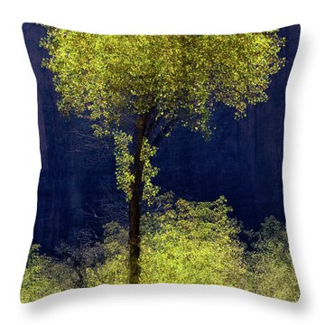 Elegance In The Park Vertical Adventure Photography By Kaylyn Franks Throw Pillow