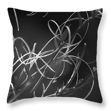 Throw Pillow featuring the photograph Elegance by Yulia Kazansky