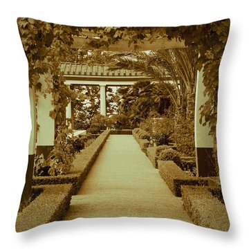 Elegant Aged Path Throw Pillow