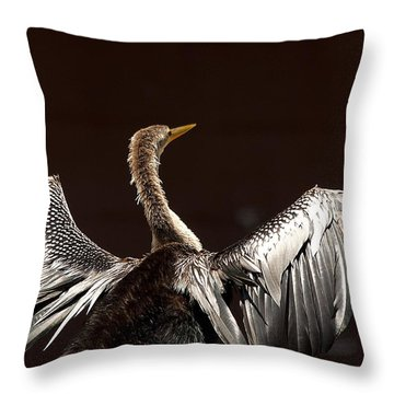 Elegant Anhinga Throw Pillow by Kenneth Albin
