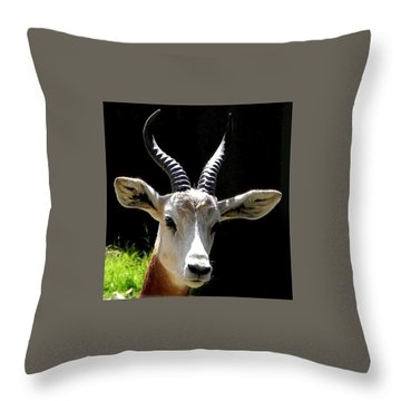 Elegant Animal Throw Pillow