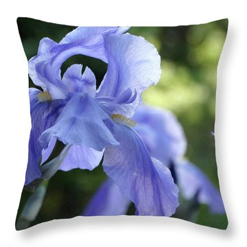 Elegant Iris In Spring Throw Pillow
