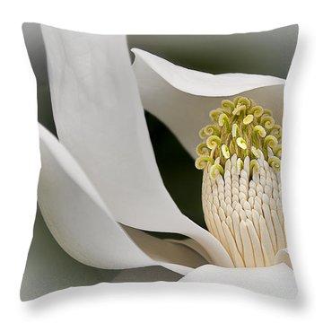 Throw Pillow featuring the photograph Elegant Magnolia II by Ken Barrett