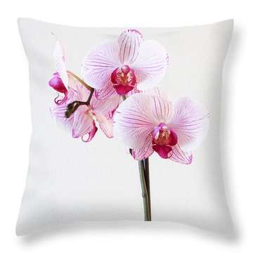 Elegant Orchid Throw Pillow by Anita Oakley