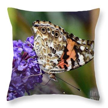 Elegant Painted Lady Throw Pillow