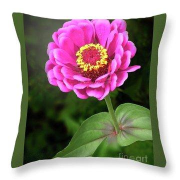 Elegant Zinnia Soft Glow Throw Pillow