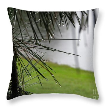 Throw Pillow featuring the photograph Elements by Greg Patzer