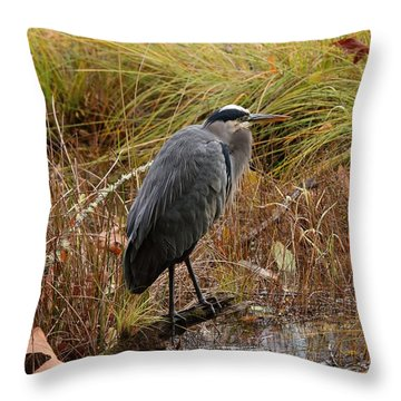 Elements Of Nature Throw Pillow