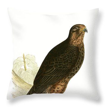 Eleonora Falcon Throw Pillow by English School