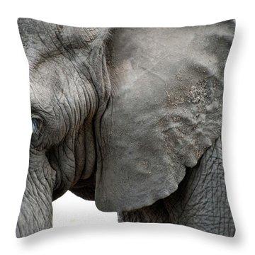 Elephant 2 Throw Pillow