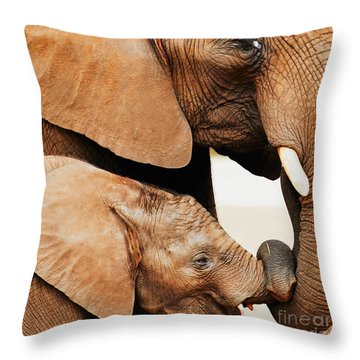Elephant Calf And Mother Close Together Throw Pillow
