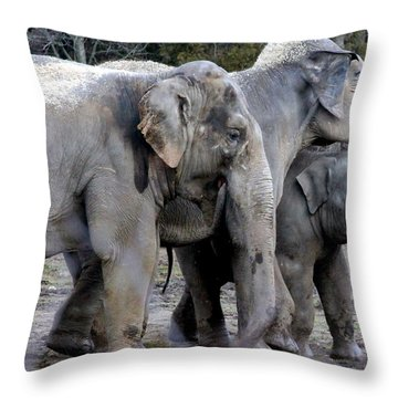 Elephant Family Throw Pillow by Laurel Talabere