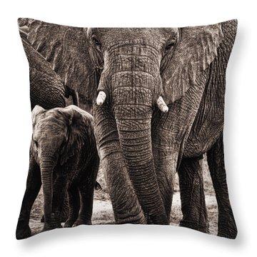 Elephant Family Time Throw Pillow