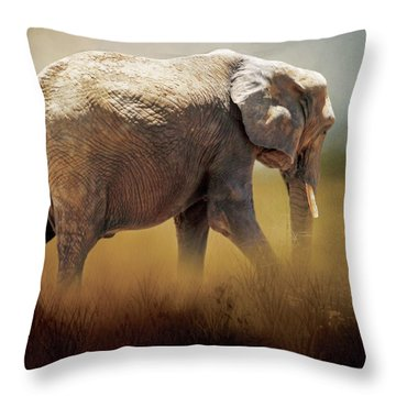 Throw Pillow featuring the photograph Elephant In The Mist by David and Carol Kelly