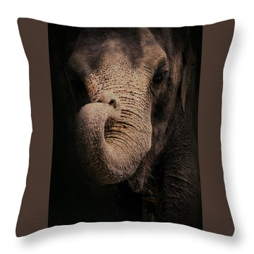 Throw Pillow featuring the photograph Elephant by Jim Vance