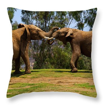 Elephant Play 3 Throw Pillow