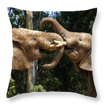 Elephant Play Throw Pillow