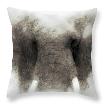 Elephant Portrait Throw Pillow by John Stuart Webbstock