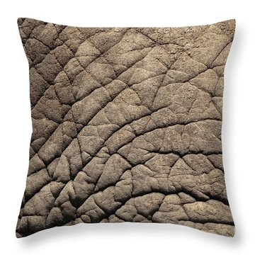 Elephant Skin Background Throw Pillow
