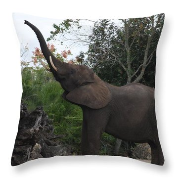 Throw Pillow featuring the photograph Elephant Time by Vadim Levin