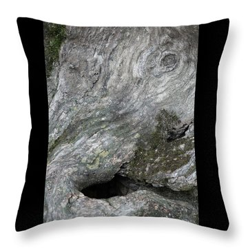 Throw Pillow featuring the photograph Elephant Trunk by Dale Kincaid