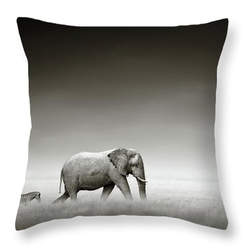 Elephant With Zebra Throw Pillow