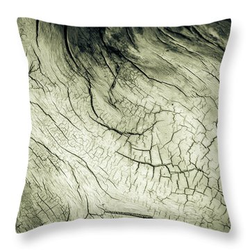 Elephant Wood Of Memory Throw Pillow