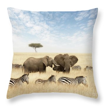 Elephants And Zebras In The Grasslands Of The Masai Mara Throw Pillow